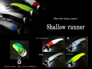 shallowrunner